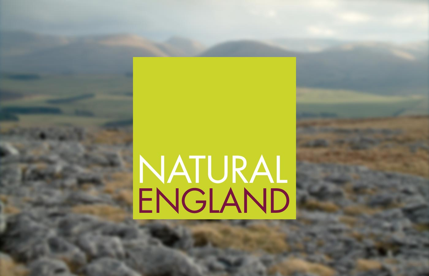 Natural England Poster Campaign Design